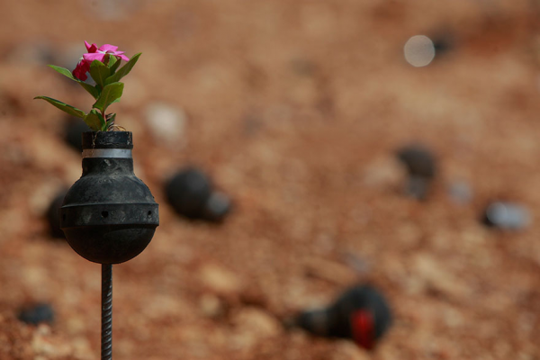1402906024173_tear-gas-flower-pots-palestine-12