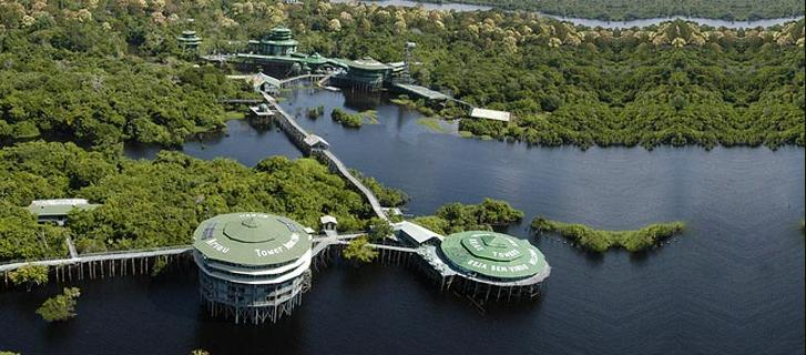 Amazonian rainforest, Brazil treehouse bizarre culture