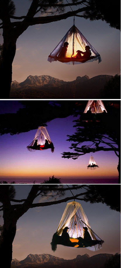 tree camping in germany bizarre culture