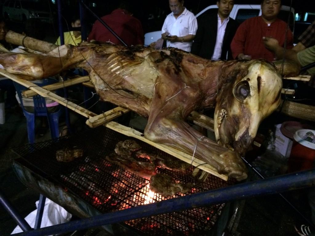 not-a-pig Alexis Jones Bizarre Culture Thailand