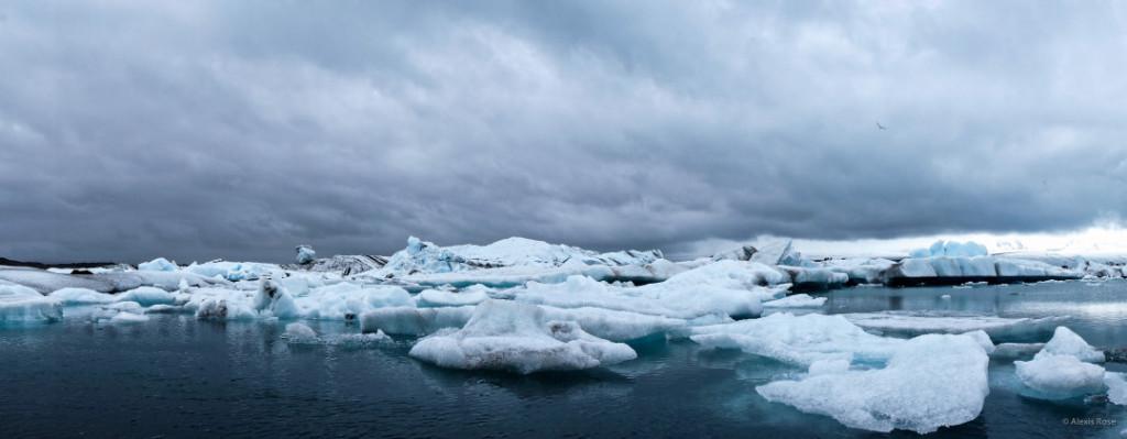 Alexis Jones Bizarre Culture iceland