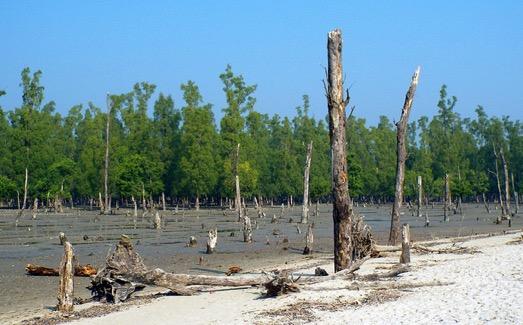 Bangladesh. climate change