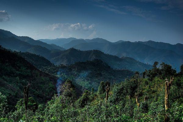 Trekking Myanmar with Momo