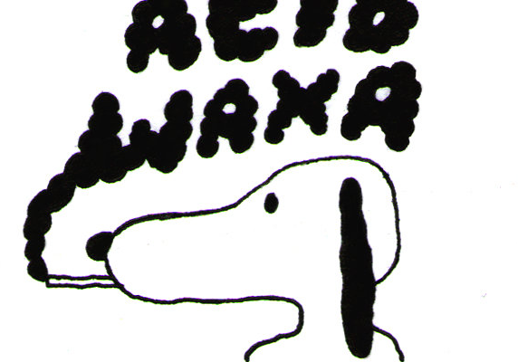 Interviewing Acid Waxa: A Love Letter to Acid